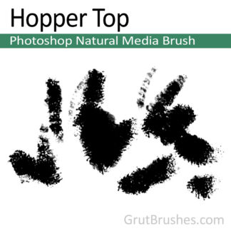 Hopper Top - Photoshop Natural Media Brush