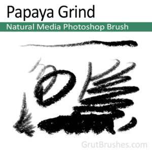 Papaya Grind - Photoshop Pastel Brush