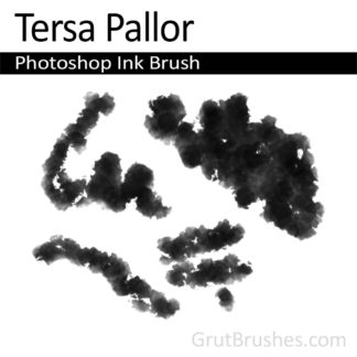 Tersa Pallor - Photoshop Ink Brush