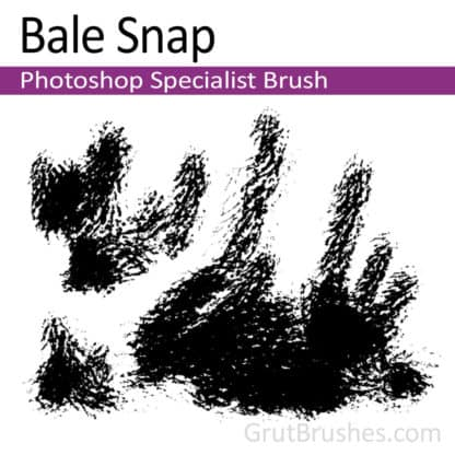 Bale Snap - Photoshop Specialist Brush