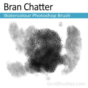 Bran Chatter - Photoshop Watercolor Brush