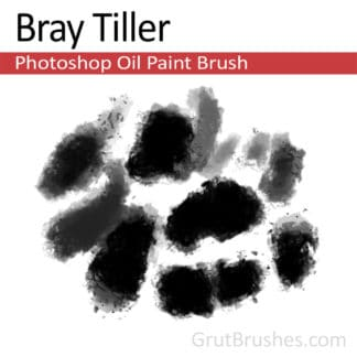 Bray Tiller - Photoshop Oil Brush
