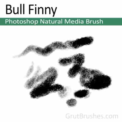 Photoshop Natural Media Brush for digital artists 'Bull Finny'