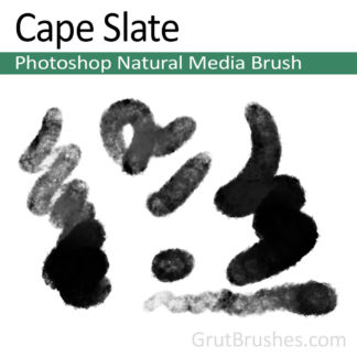 Photoshop Natural Media Brush for digital artists 'Cape Slats'