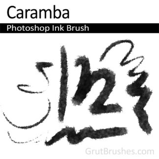 Photoshop Ink Brush for digital artists 'Caramba'