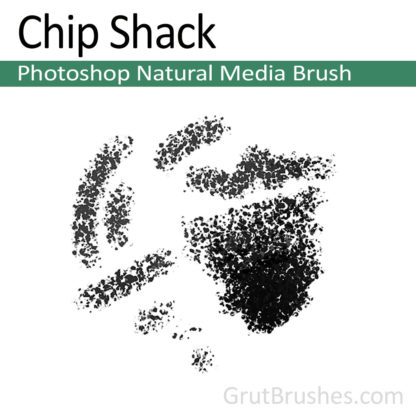 Photoshop Natural Media Brush for digital artists 'Chip Shack'