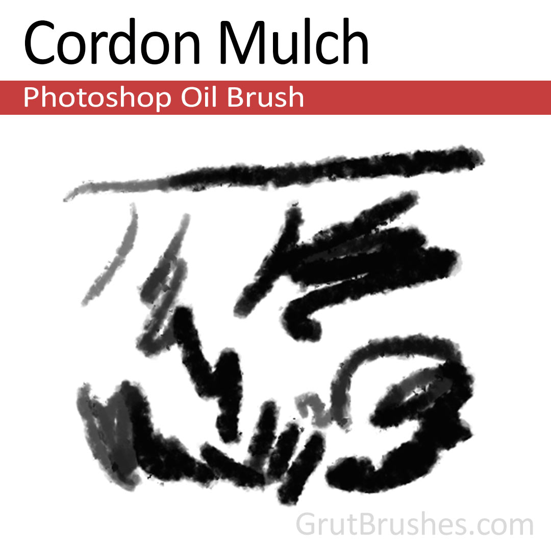 'Cordon Mulch' Photoshop oil brush for digital painting