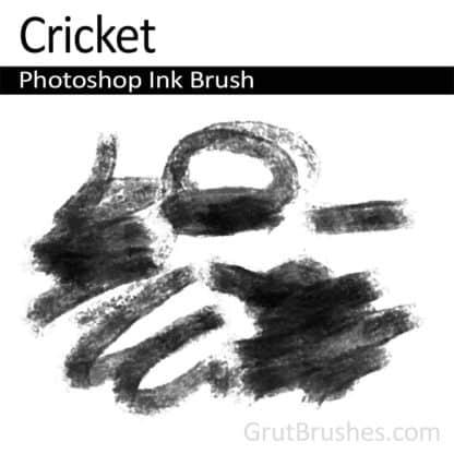 Photoshop Ink Brush for digital artists 'Cricket'