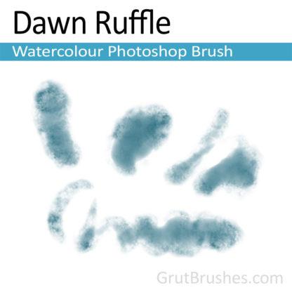 Photoshop Watercolor for digital artists 'Dawn Ruffle'