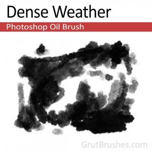 Dense Weather Photoshop oil brush