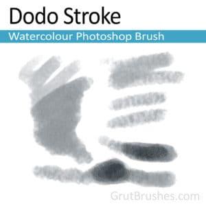 'Dodo Stroke' Photoshop Watercolor Brush for digital artists