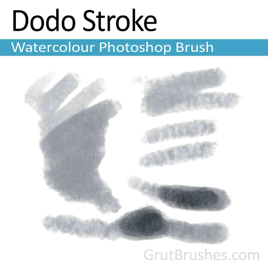 'Dodo Stroke' Photoshop watercolor brush for digital painting