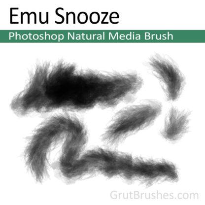 Photoshop Natural Media for digital artists 'Emu Snooze'