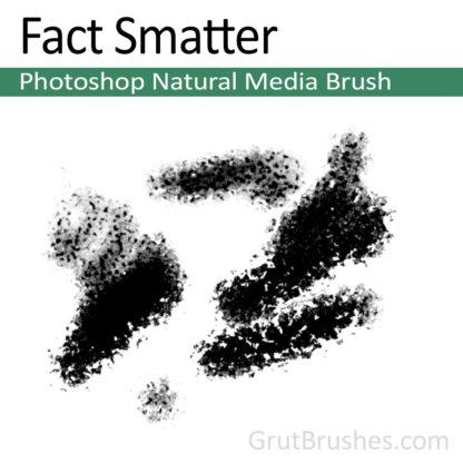 Photoshop Natural Media for digital artists 'Fact Smatter'