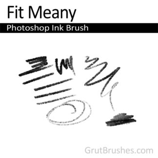 Photoshop Ink Brush for digital artists 'Fit Meany'