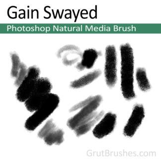 Photoshop Natural Media Brush for digital artists 'Gain Swayed'