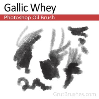 Gallic Whey - Photoshop Oil Brush