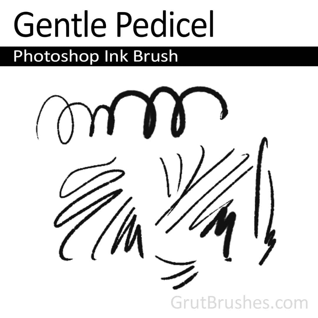 'Gentle Pedicel' Photoshop ink brush for digital painting