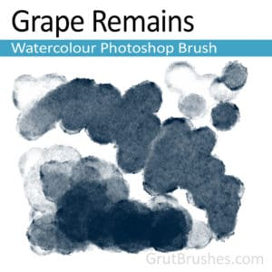 Grape Remains - Photoshop Watercolour Brush