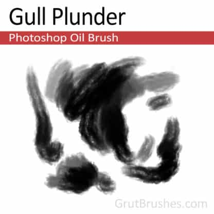 Gull Plunder - Photoshop Oil Brush