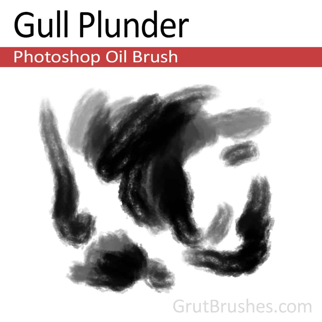 'Gull Plunder' Photoshop oil brush for digital painting