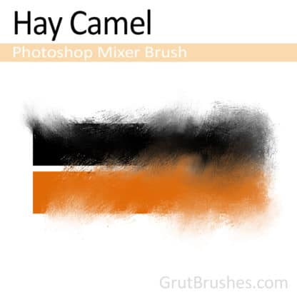Hay Camel - Photoshop Mixer Brush