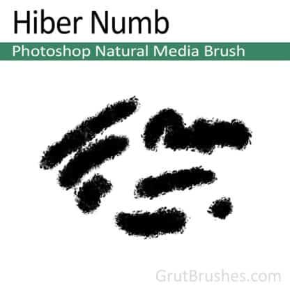 Photoshop Natural Media Brush for digital artists 'Hiber Numb'