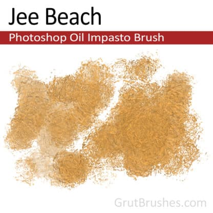 Jee Beach - Impasto Oil Photoshop Brush