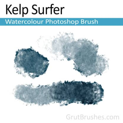 Photoshop Watercolour Brush for digital artists 'Kelp Surfer'