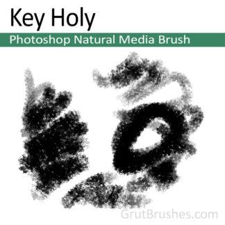 Photoshop Natural Media for digital artists 'Key Holy'