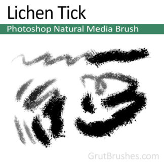 Photoshop Natural Media Brush for digital artists 'Lichen Tick'