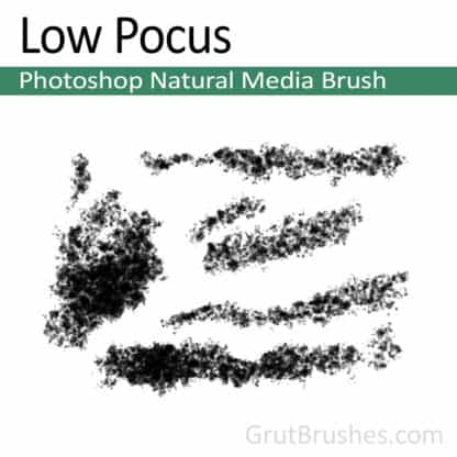 Photoshop Natural Media Brush for digital artists 'Low Pocus'