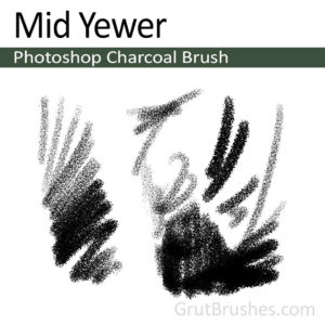 """Mid Yewer"" Charcoal Brush for Photoshop"