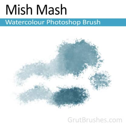 Photoshop Watercolour Brush for digital artists 'Mish Mash'