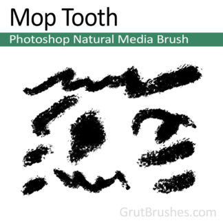Photoshop Natural Media Brush for digital artists 'Mop Tooth'