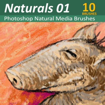 Natural Media 01 - 10 Photoshop Brushes