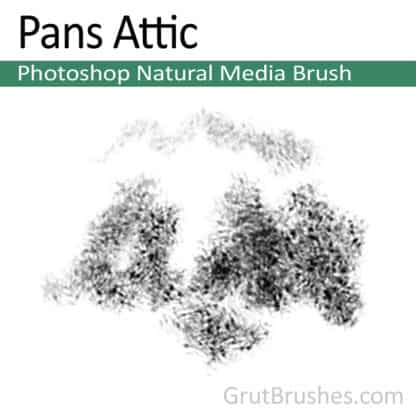 Pans Attic - Photoshop Natural Media Brush
