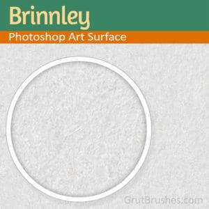 Seamless Paper Texture Brinnley