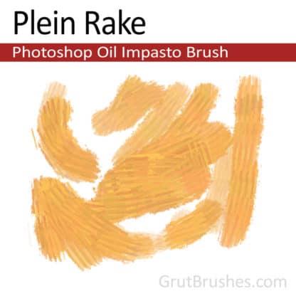 Plein Rake - Impasto Oil Photoshop Brush