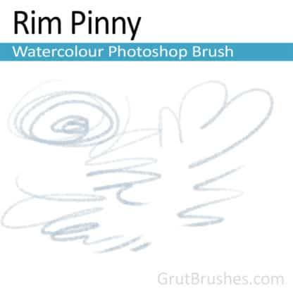 Photoshop Watercolor Brush for digital artists 'Rim Pinny'