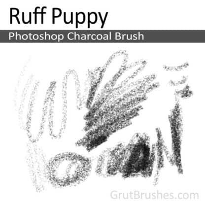 Ruff Puppy - Photoshop Charcoal Brush