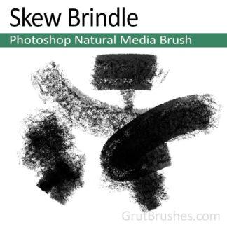 Photoshop New Media Brush for digital artists 'Skew Brindle'