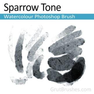 Sparrow Tone - Photoshop Watercolour Brush