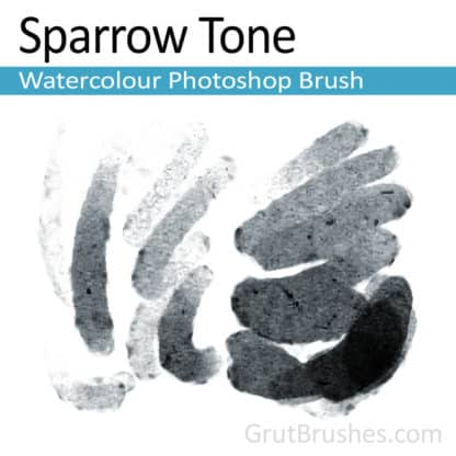 Sparrow Tone - Photoshop Watercolour Brush