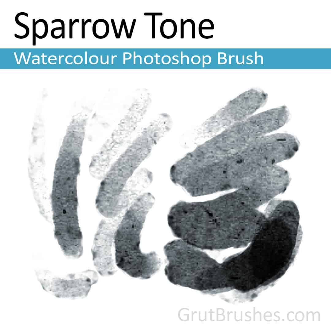 'Sparrow Tone' Photoshop watercolor brush for digital painting
