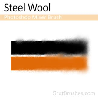 Steel Wool - Photoshop Mixer Brush