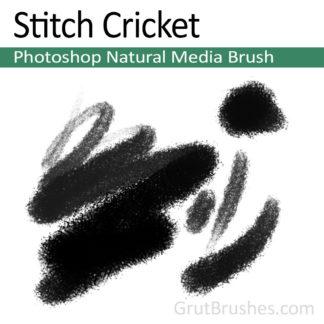 Photoshop Natural Media for digital artists 'Stitch Cricket'