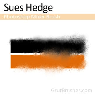 Sues Hedge - Photoshop Mixer Brush