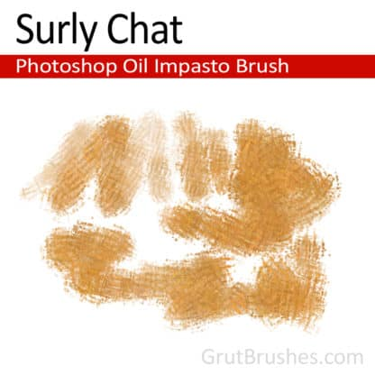 Surly Chat - Photoshop Impasto Oil Brush