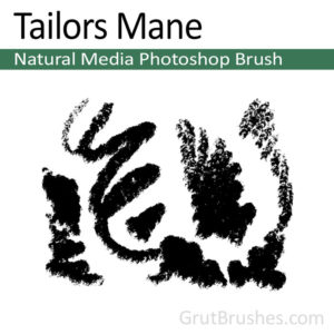 'Tailors Mane' Photoshop Pastel Brush